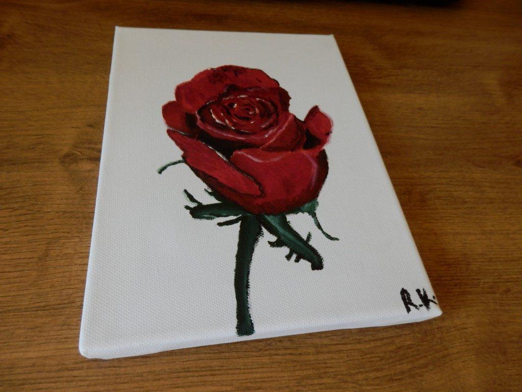 Ruža ~ Rose